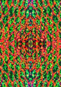 claudia-owen-surface-pattern-design-13