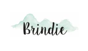 Brindie Logo Featured in Claudia Owen Blog